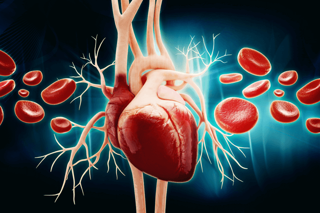 LEADER trial eligibility and preventable cardiovascular