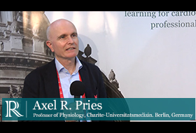 Axel Pries