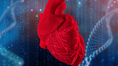 Transcriptomic Research in Heart Failure with Preserved Ejection Fraction