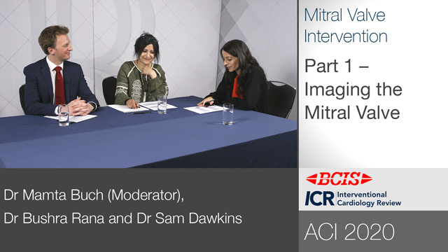 BCIS ACI 2020 Roundtable: Mitral Valve Intervention — Part 1/3