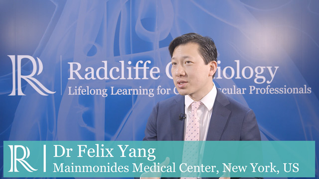 EHRA 2019 : An Introduction to Convergent Procedures - Felix Yang