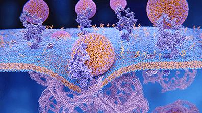Management of Atherogenic Dyslipidaemia