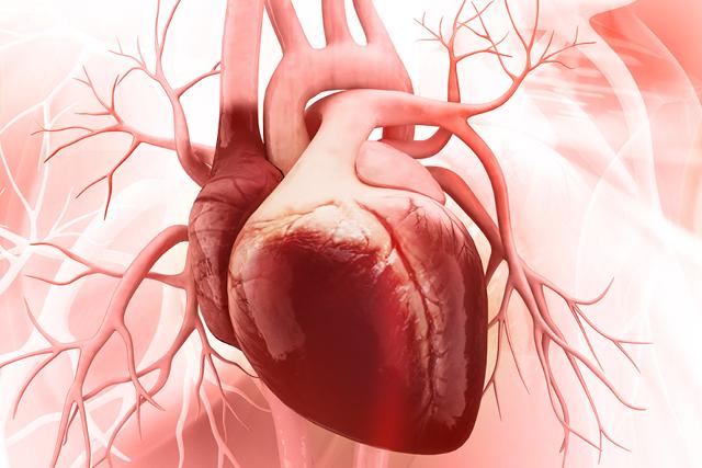 European Society of Cardiology/Heart Failure