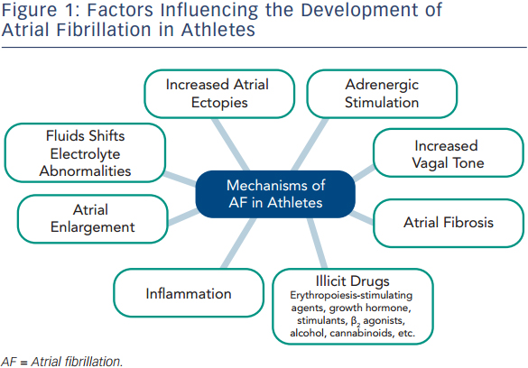 Factors Influencing the development of AF in Athletes