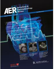 AER Volume 8 Issue 4 Winter 2019