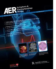 AER Volume 9 Issue 4 Winter 2020