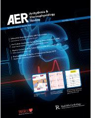 AER Volume 9 Issue 3 Autumn 2020