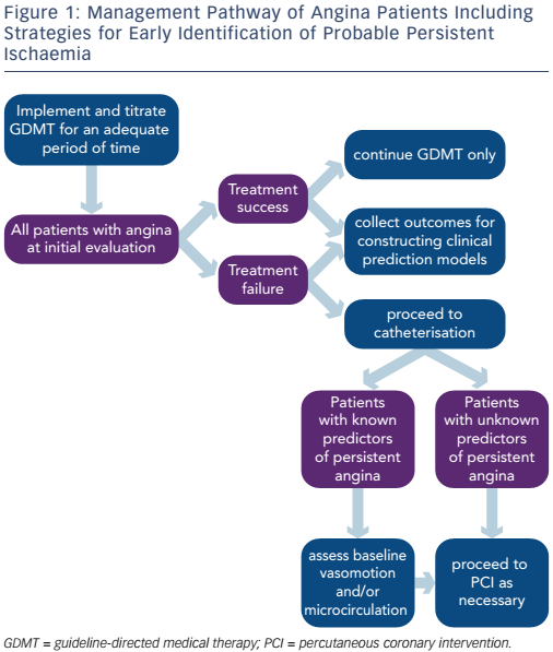 Figure 1: Management Pathway of Angina Patients Including Strategies for Early Identification of Probable Persistent Ischaemia