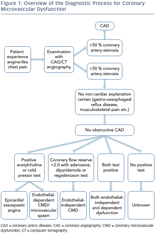 Figure 1: Overview of the Diagnostic Process for Coronary Microvascular Dysfunction