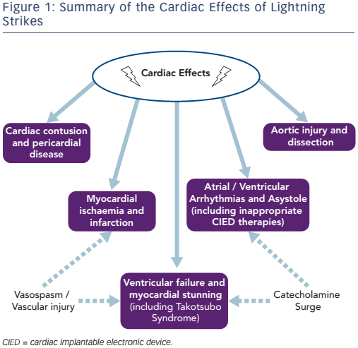 Summary of the Cardiac Effects of Lightning Strikes