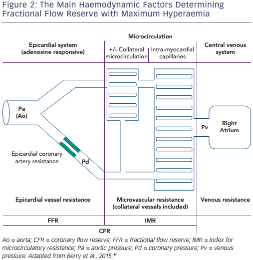Figure 2: The Main Haemodynamic Factors Determining Fractional Flow Reserve with Maximum Hyperaemia