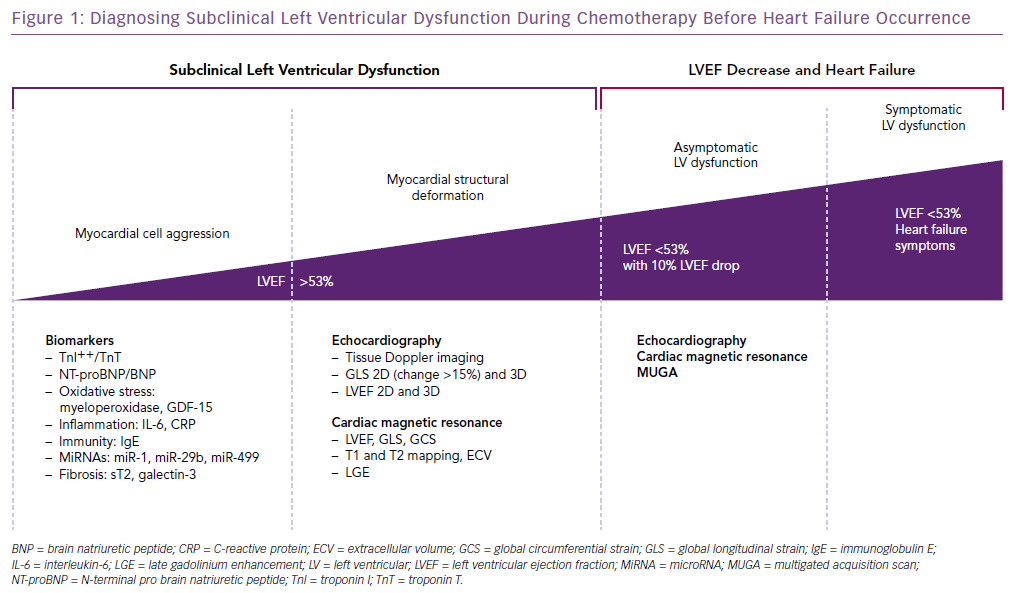 Diagnosing Subclinical Left Ventricular Dysfunction During Chemotherapy Before Heart Failure Occurrence