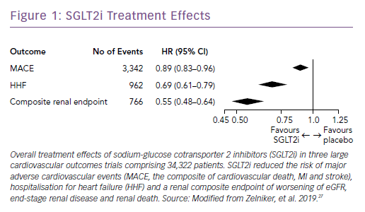 SGLT2i Treatment Effects