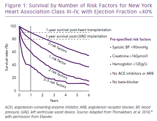 Survival by Number of Risk Factors for New York<br />Heart Association Class III–IV, with Ejection Fraction <40%