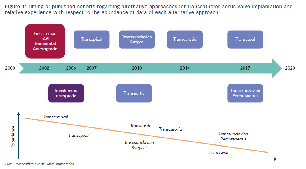 Figure 1: Timing of published cohorts regarding alternative approaches for transcatheter aortic valve implantation and relative experience with respect to the abundance of data of each alternative approach