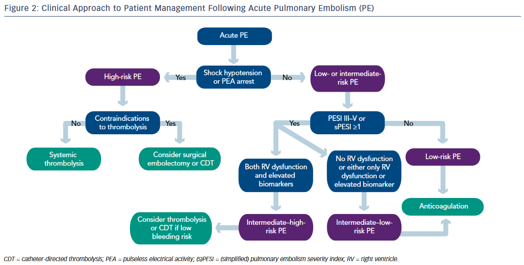 Figure 2: Clinical Approach to Patient Management Following Acute Pulmonary Embolism (PE)