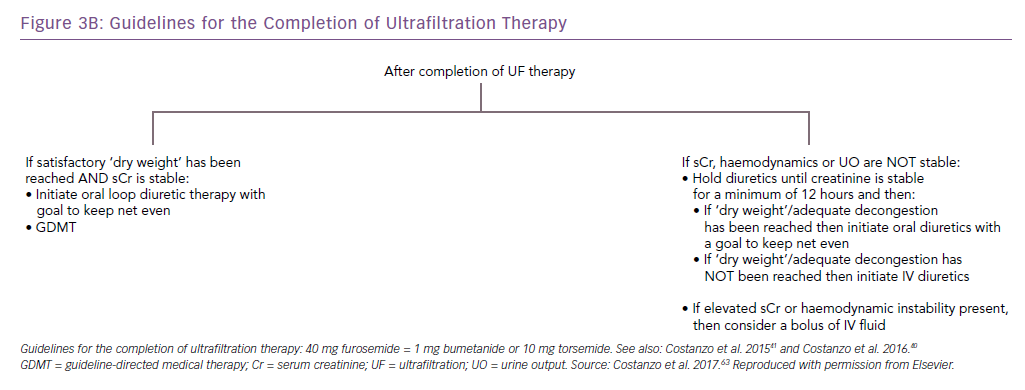 Guidelines for the Completion of Ultrafiltration Therapy
