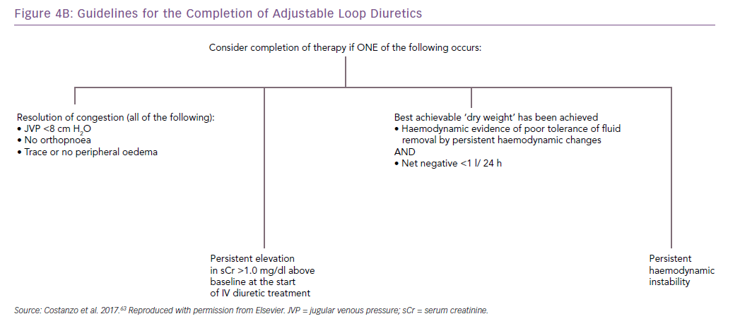 Guidelines for the Completion of Adjustable Loop Diuretics