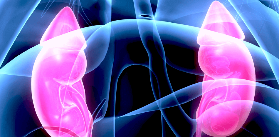 Haemodynamic Balance in Acute and Advanced Heart Failure