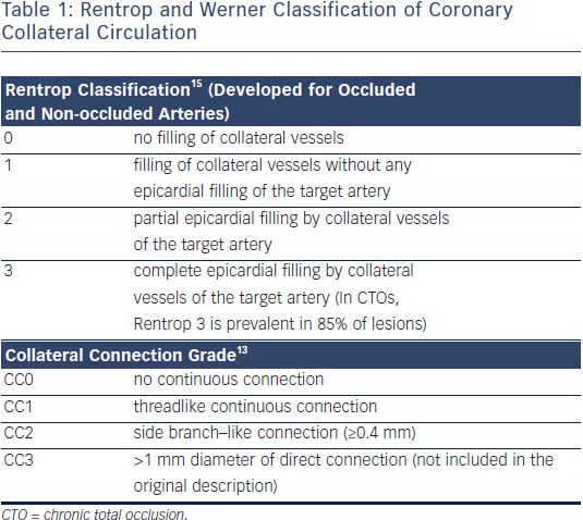 Rentrop and Werner Classification of Coronary Collateral Circulation