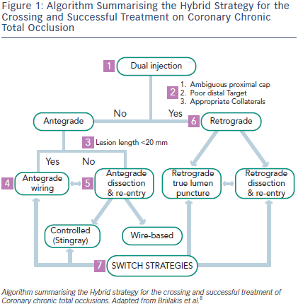 Hybrid Strategy for the Crossing and Successful Treatment