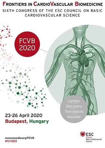 FCVB 2020