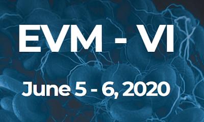EVM-VI 2020