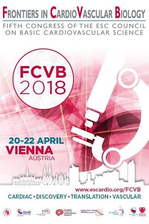 FCVB 2018