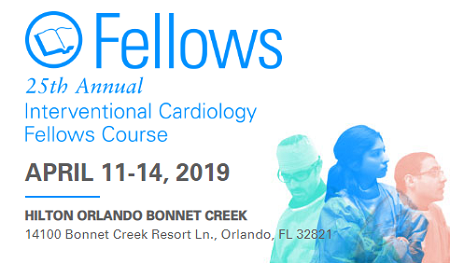 Fellows Course 2019