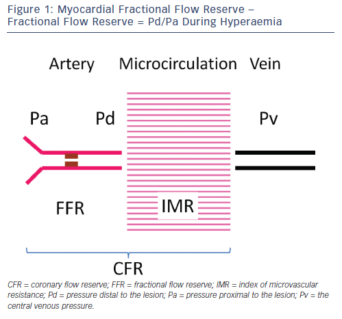 Ffr Coronary Flow Reserve Microvascular Clinical Practice