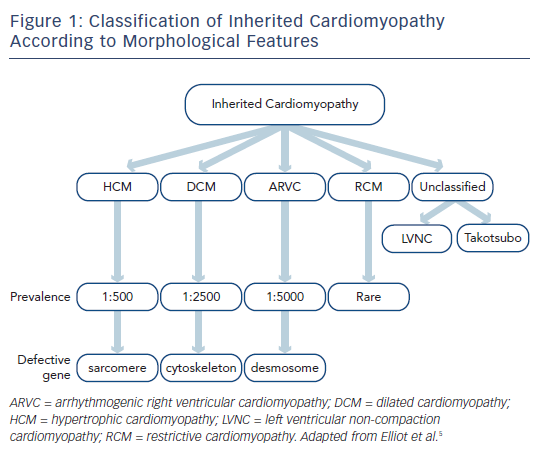Figure 1: Classification of Inherited Cardiomyopathy According to Morphological Features