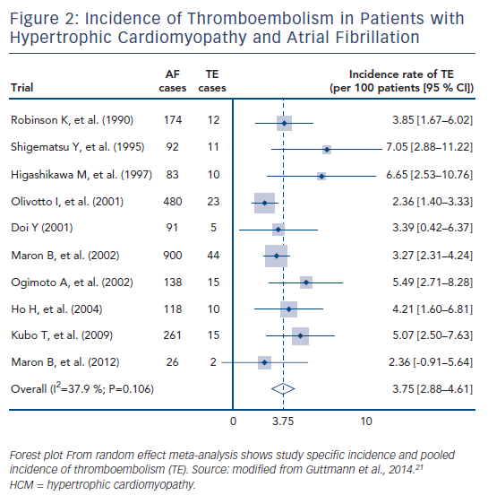 Figure 2: Incidence of Thromboembolism in Patients with Hypertrophic Cardiomyopathy and Atrial Fibrillation