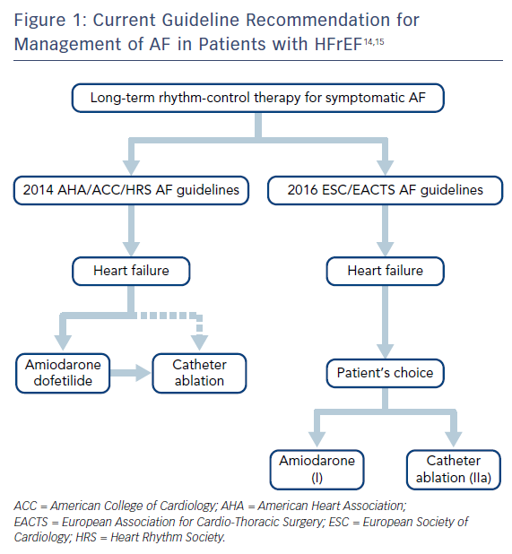Figure 1: Current Guideline Recommendation for Management of AF in Patients with HFrEF