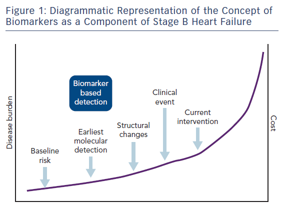 Figure 1: Diagrammatic Representation of the Concept of Biomarkers as a Component of Stage B Heart Failure