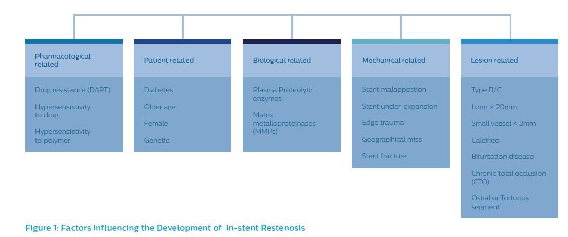 Factors Influencing the Development of In-stent Restenosis