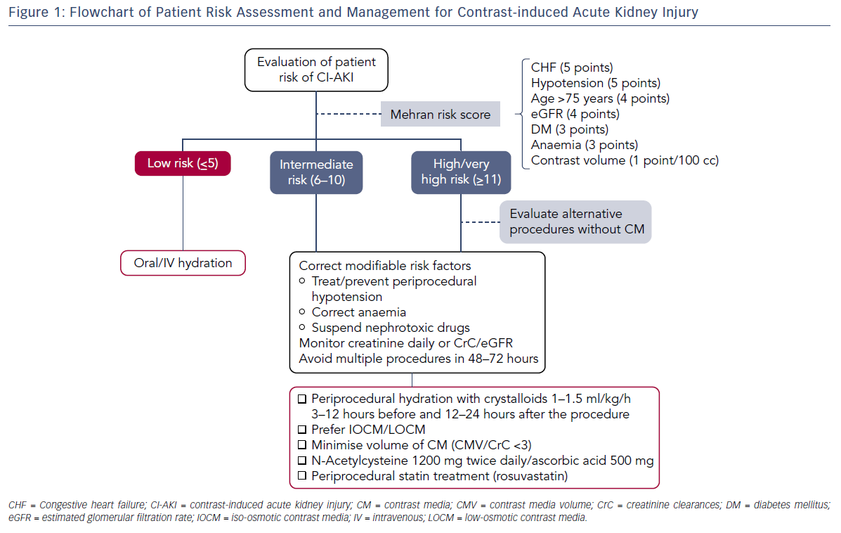 Figure 1: Flowchart of Patient Risk Assessment and Management for Contrast-induced Acute Kidney Injury