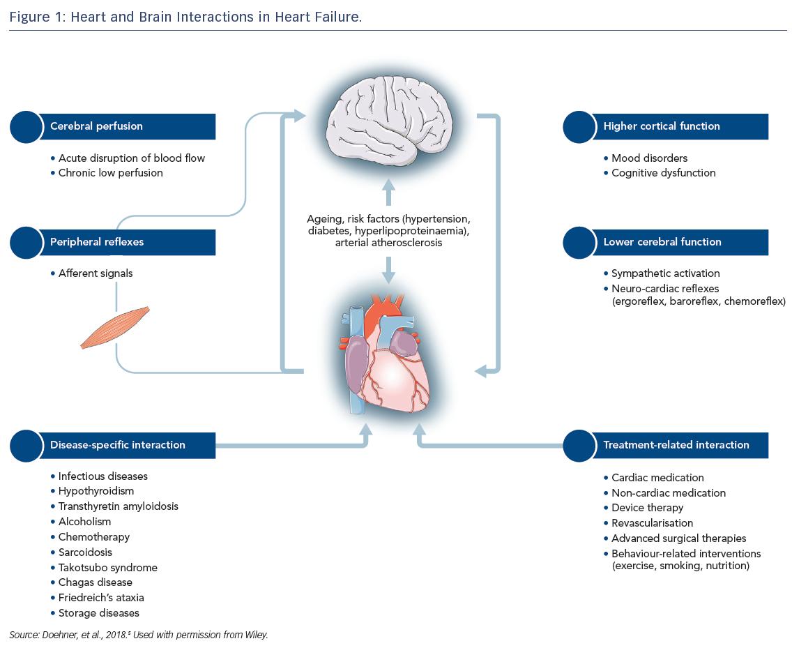 Heart–Brain Interactions Heart Failure - cardiac failure review
