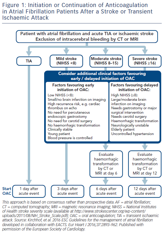 Figure 1: Initiation or Continuation of Anticoagulation in Atrial Fibrillation Patients After a Stroke or Transient Ischaemic Attack