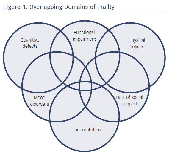 Figure 1: Overlapping Domains of Frailty