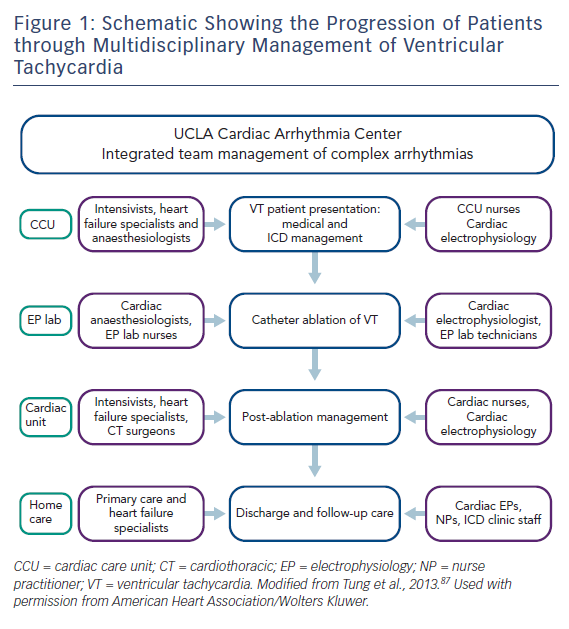 Schematic Showing the Progression of Patients through Multidisciplinary Management of Ventricular Tachycardia