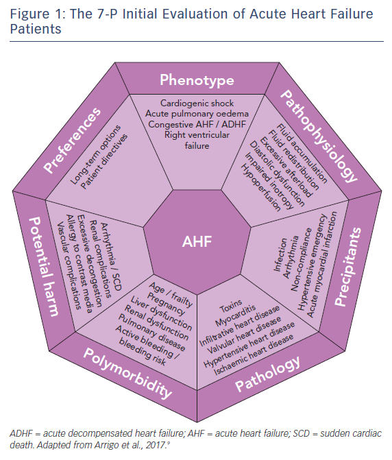 Figure 1: The 7-P Initial Evaluation of Acute Heart Failure<br />