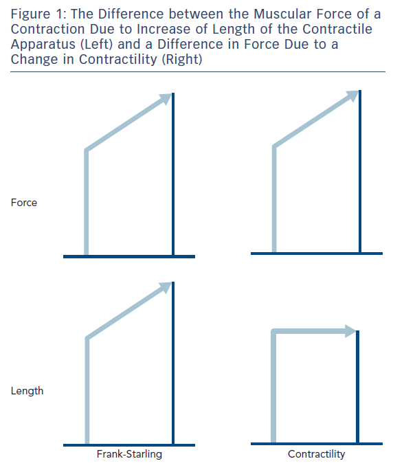 Figure 1: The Difference between the Muscular Force of a Contraction Due to Increase of Length of the Contractile Apparatus (Left) and a Difference in Force Due to a Change in Contractility (Right)