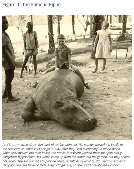 Figure 1: The Famous Hippo