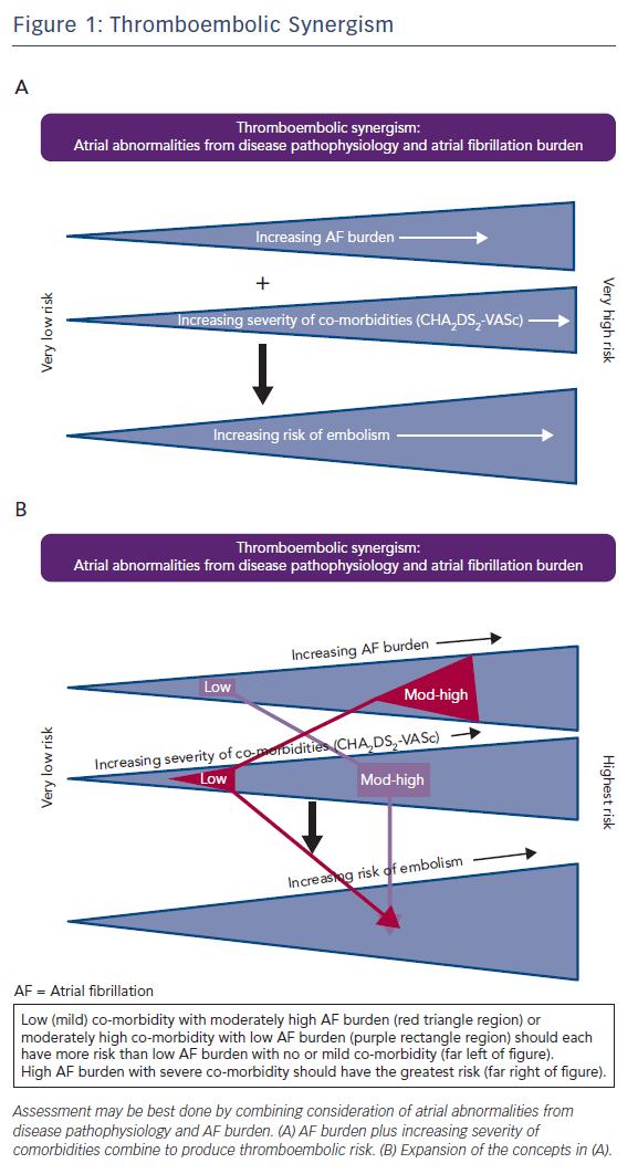Figure 1: Thromboembolic Synergism