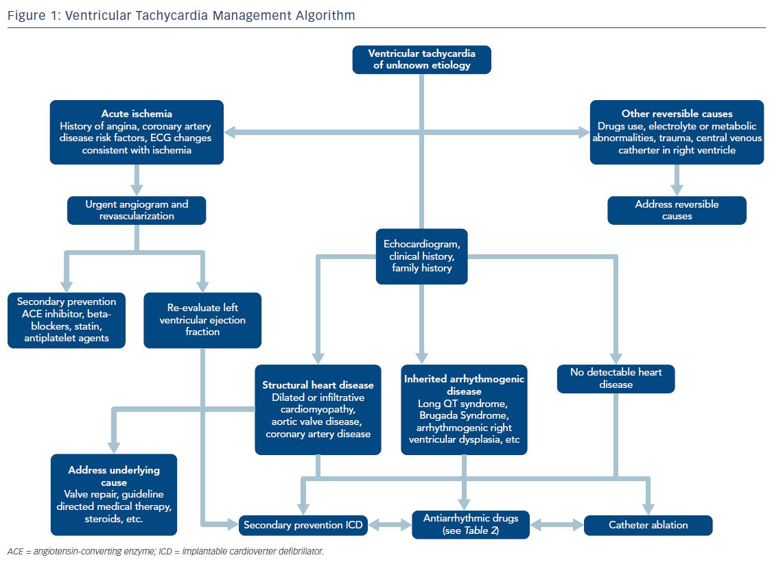 Figure 1: Ventricular Tachycardia Management Algorithm