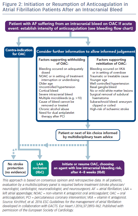 Figure 2: Initiation or Resumption of Anticoagulation in Atrial Fibrillation Patients After an Intracranial Bleed