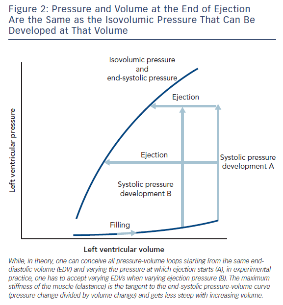 Figure 2: Pressure and Volume at the End of Ejection Are the Same as the Isovolumic Pressure That Can Be Developed at That Volume