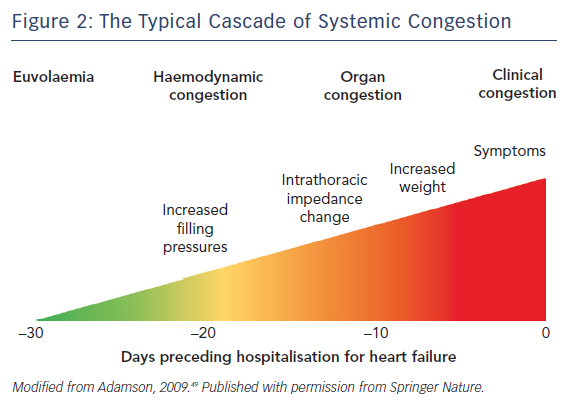 Figure 2: The Typical Cascade of Systemic Congestion