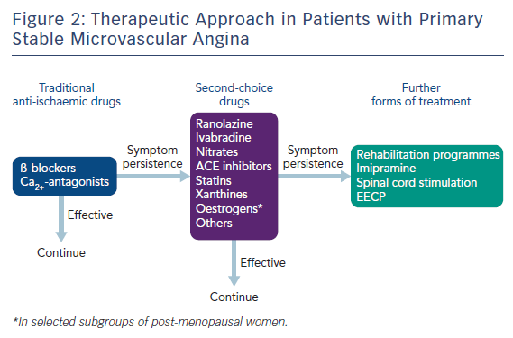 Figure 2: Therapeutic Approach in Patients with Primary Stable Microvascular Angina