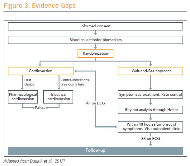 Figure 3. Evidence Gaps